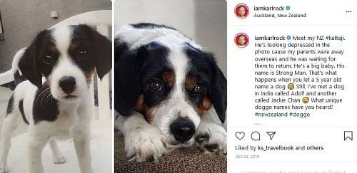 कार्ल रॉक की इंस्टाग्राम पोस्ट उनके पालतू कुत्ते के बारे में