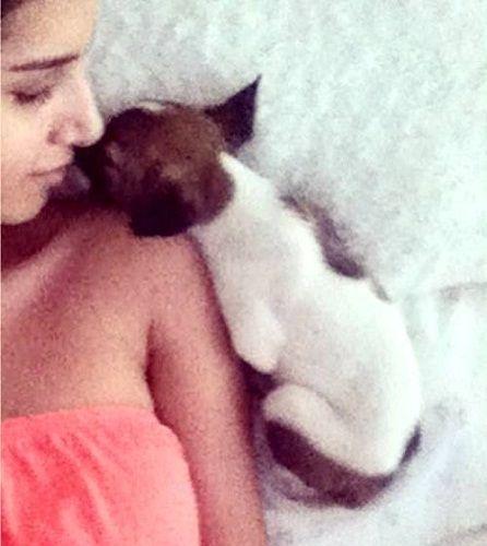 तारा सुतारिया को कुत्तों से प्यार है